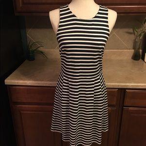Ann Taylor Loft Striped Dress White and Navy Blue